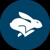 Rabbit-Ping